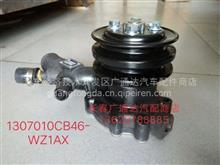一汽无锡柴490  485水泵1307010CB46-WZ1AⅩ/1307010CB46-WZ1AⅩ水泵