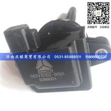重汽T12发动机VG1238090109A发动机线束/VG1238090109A