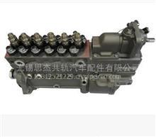 潍柴WP10 高压油泵 /612601080457
