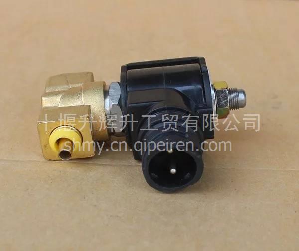 雷诺发动机排气制动电磁阀总成排气制动阀 / D5010 S08325