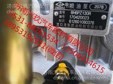 612601080376潍柴喷油泵/德龙 欧曼 一汽 大运