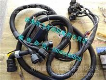 612600191052潍柴发动机ecu线束612600191052/612600191052