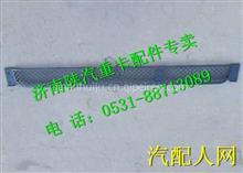 DZ97189621054陕汽德龙X3000牵引车保险杠中网 /DZ97189621054