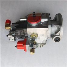 山东博山水泵机组燃油泵康明斯发动机配件NT855-P400燃油泵/4951403