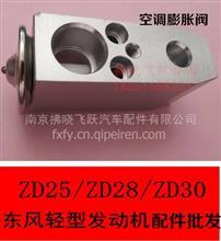 东风轻型发动机ZD2830空调膨胀阀锐铃骐凯普特斯达K皮卡日产尼桑/1802734