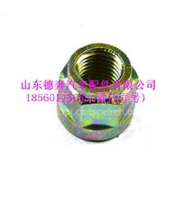 WG9925520269重汽豪沃70矿六角带肩自锁螺母/WG9925520269
