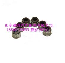 202V04902-0033重汽豪沃T7H曼发动机进气门杆油封/202V04902-0033