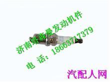 202V25923-0001重汽曼发动机MT13火花塞/202V25923-0001