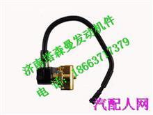 082V11103-0009重汽曼MT07发动机主低压电磁阀不带接头/082V11103-0009