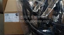 康明斯QSM11全连接式线束2864514X3658974 4952750 4059810 /M11电控模块线束3099354 4004499