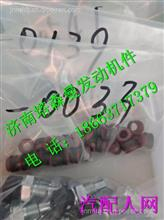 202V04902-0033重汽曼MC11进气门杆油封/202V04902-0033