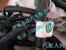 812W25424-6365重汽曼MC11全功能发动机线束/812W25424-6365