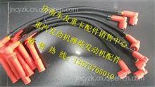 612600190709潍柴天然气高压点火线/612600190709