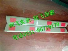810W62930-0170重汽豪沃T5G右杂物盒底板/810W62930-0170