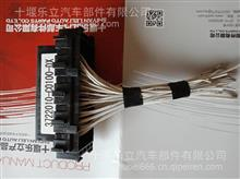 天龙保险丝盒/带线/3722010-C0100-DX