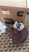 康明斯K50水泵/4089302
