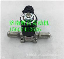 DZ913189711304陕汽德龙尿素泵罐加热电磁阀总成/DZ913189711304