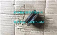 TZ56077000031重汽豪威60矿大江迈克桥控制缸活塞/TZ56077000031