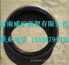 SQ3001025KA01蓬翔矿用车桥油封总成-主销/SQ3001025KA01