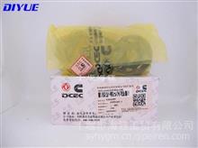 东风康明斯6BT系列柴油发动机配件皮带涨紧轮现货/3922900