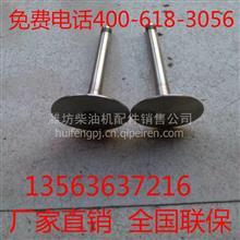潍坊潍柴6160 6170柴油机配件进气门 排气门 锁夹/17986