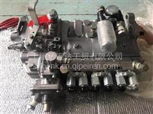 优势供应3915581-RX燃油喷油泵康明斯OEM件配件原装现货 适用于/3915581