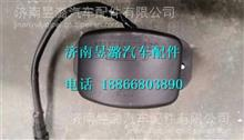 DZ96189812114陕汽德龙新M3000转向灯/DZ96189812114