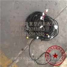 202V27120-0020重汽曼MC07发动机SCR线束 尿素箱线束/202V27120-0020