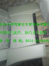 陕汽德龙X3000顶导流罩/DZ14251870011