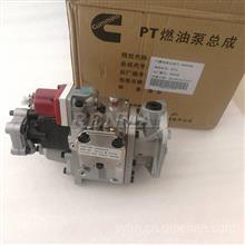 重庆康明斯NT855发动机PT泵4999468船用发电机组燃油喷射泵总成/4999468