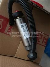 东风天龙大力神雷诺电子输油泵/D5010222601
