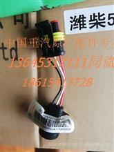 原厂重汽豪沃尿素泵电磁阀总成 WG1034121181+002/WG1034121181+002