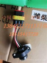 原厂重汽豪沃尿素泵电磁阀总成 WG1034121181+001/WG1034121181+001
