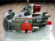Cummins康明斯柴油发动机 PT燃油泵 3042115 PT泵/3042115