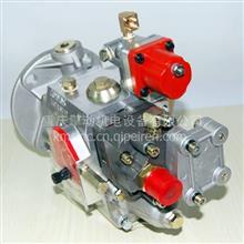 康明斯柴油发动机 PT燃油泵 3262033 推土机用燃油泵/NTA855