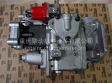 康明斯柴油发动机NTA855-M PT燃油泵 M350 船机 用燃油泵/NTC-290