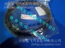 一汽解放锡柴发动机53D曲轴后油封1005060-53D/1005060-53D