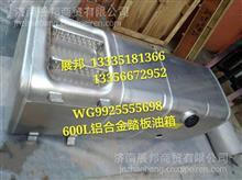 WG9925555698 重汽汕德卡C7H 600L铝合金踏板油箱(675X620)_右置/WG9925555698