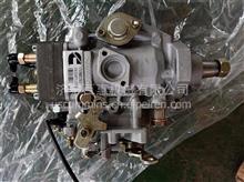 美国康明斯B3.3燃油泵/泵头、油嘴柱塞活塞四配套修理包/B3.3-4D95