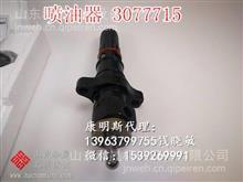 3077715喷油器适配KTA19发电机组 重油PT正品原装/3077715