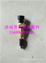 欧曼ETX原厂水温水位传感器/欧曼ETX原厂水温水位传感器