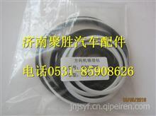 820096方向机修理包D50-Z06/820096