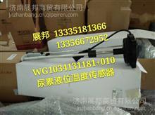 WG1034131181+010 重汽斯太尔M5G 尿素液位温度传感器/WG1034131181+010