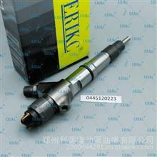 陕汽德龙发动机喷油器B445121435艾瑞克喷油器总成B445121435/B445121435