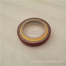 适用于CCEC发动机防尘油封3005874工程机械柴油机附件驱动油封/3005874
