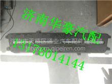 重汽豪沃A7驾驶室配件 重汽金王子驾驶室面罩中网/AZ1618770011 AZ1618770102
