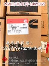 4089865分体活塞组件{QSM11进口活塞}  中国徐工集团/4089865
