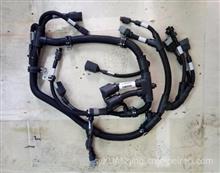 促销进口康明斯QSL/QSC发动机线束 电子模块线束4943176/4943176