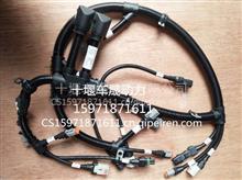 销售东风康明斯工程机械QSB6.7发电机线束/4943176