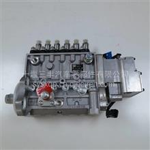 【4940749】康明斯燃油喷油泵/4940749